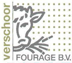 13. verschoor - logo