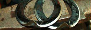 58. hoefsmederij-Berrie-Komejan-300x101 - logo